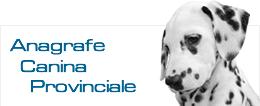anagrafe-canina-provinciale